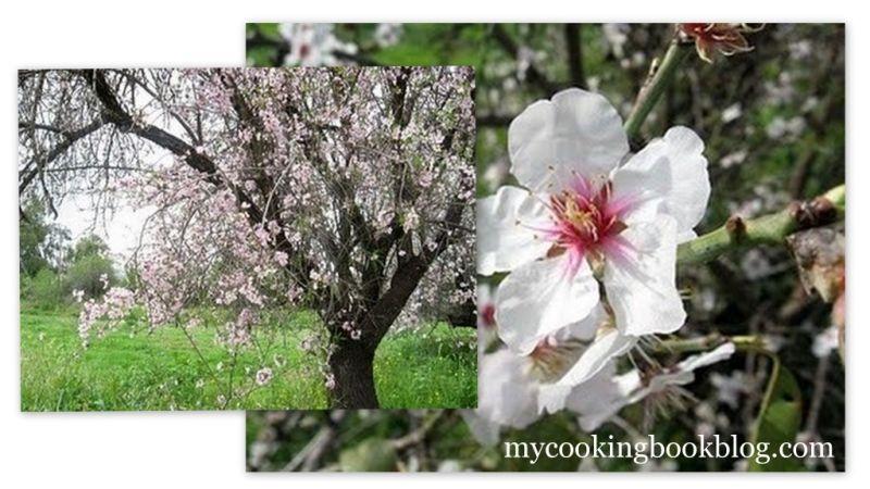 Как Изглежда Пролетта в Кипър